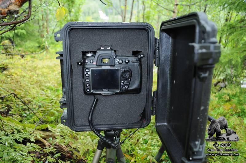 Nikon D300 viltkamera