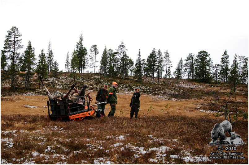 Arnstein Kirste, Kenneth Gåsbakk og Siw Ellinor Aagård tar en stopp oppe på myrene.